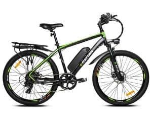 IPAS Rattan Electric Bike