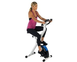 ProGear Folding Magnetic Upright Bike