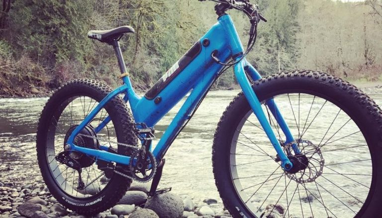 blue fat tire electric bike