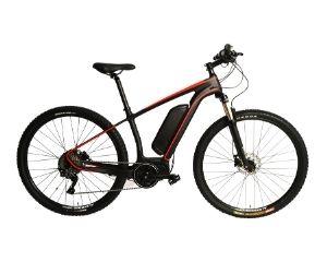 Stradalli Carbon Fiber 29er MTB e-Bike